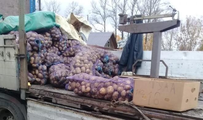 Житель Тверской области торговал картофелем, нарушая закон